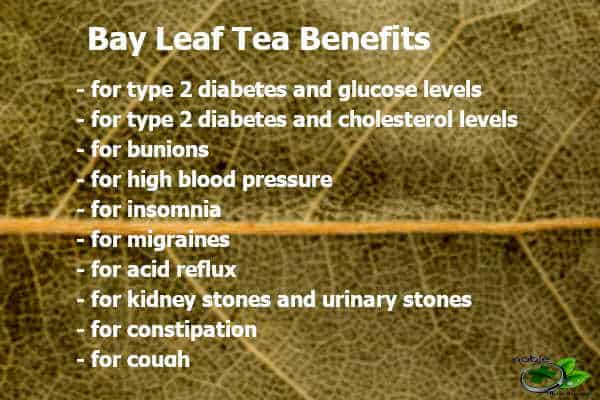 Bay Leaf Tea Health Benefits and Its Effectiveness