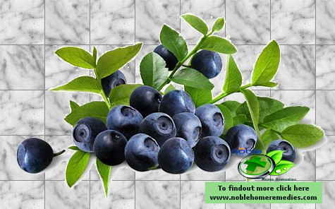 Bilberry Extract for Diabetes