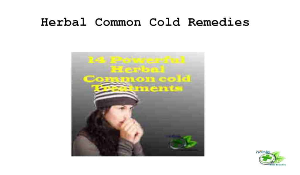 Herbal Common Cold Treatment