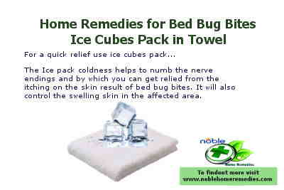 Ice Cubes - Home Remedies for Bed Bug Bites