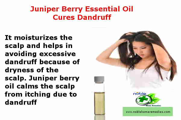 Juniper Berry Essential Oil Cures Dandruff