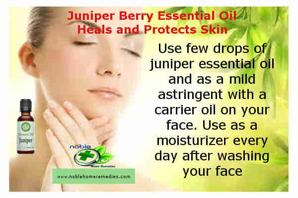 Juniper Berry Essential Oil Heals and Protects the Skin