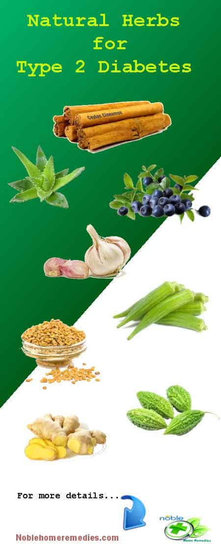 Natural Herbs for Diabetes Type 2 - remedies