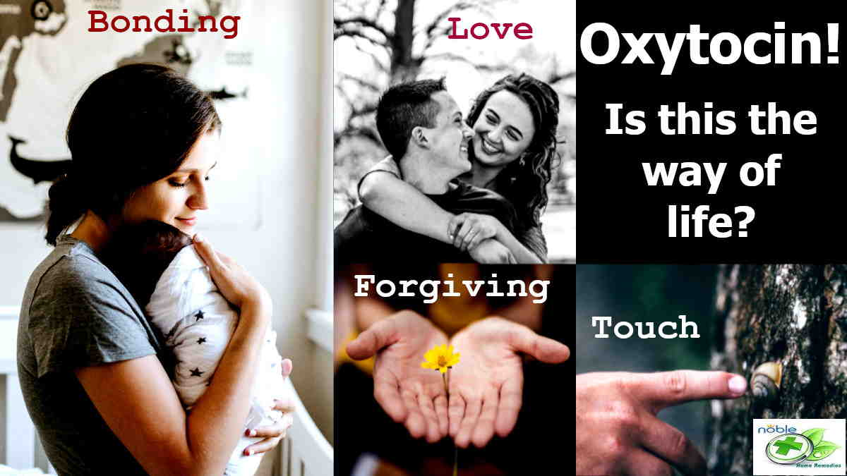 Oxytocin Benefits, Uses and Side - Love Hormone Or Cuddle HormoneEffects