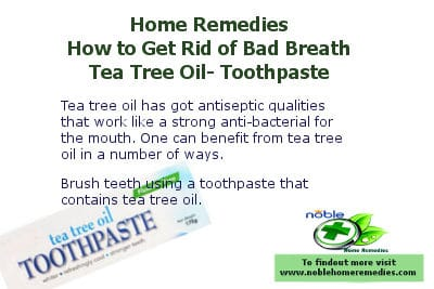 Tea Tree Oil Toothpaste - How to Get Rid of Bad Breath - Home Remedies