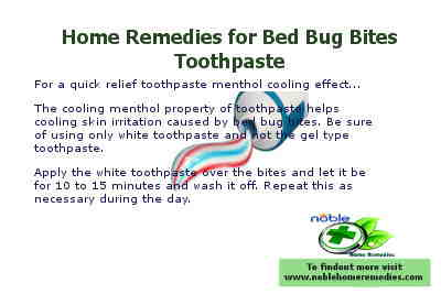 Toothpaste Menthol - Home Remedies for Bed Bug Bites