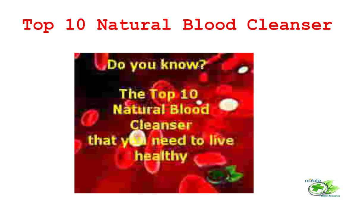 Top 10 Natural Blood Cleanser