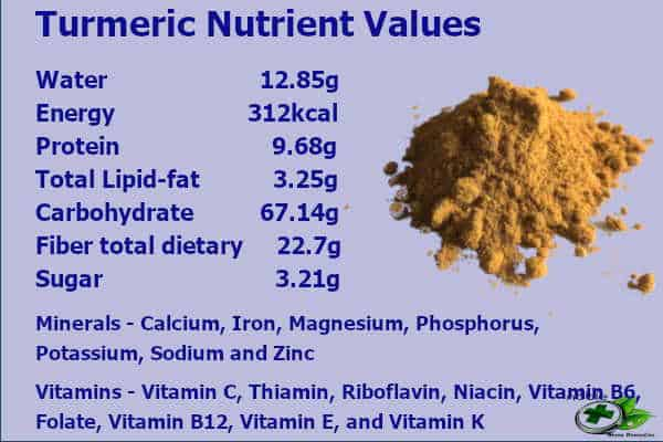 Turmeric Nutrient Values and Turmeric Health Benefits