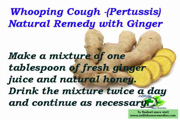 Whooping Cough - Ginger Remedy