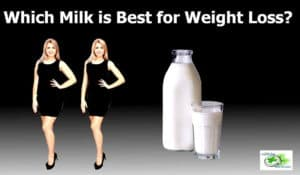 Milk for weight loss: which milk is best for weight loss? - Cow's Milk and Plant based milk comparison